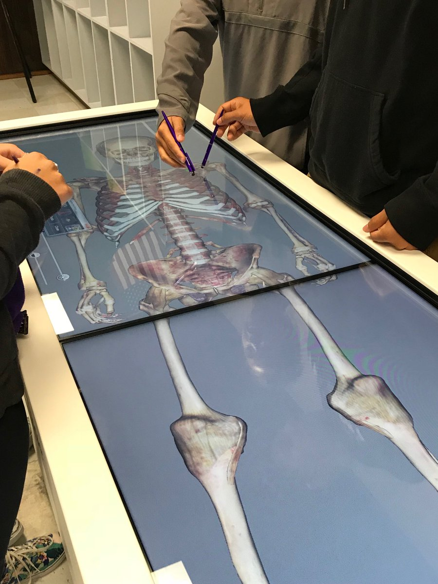 Students at LBJ High School work on life-sized computer simulated cadavers made possible through dual credit funding.